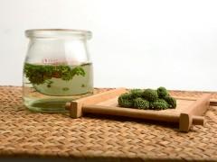 三七花泡茶应该放几朵—三七花泡茶的功效?
