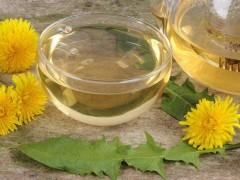蒲公英的花能做花茶吗—怎么制作?